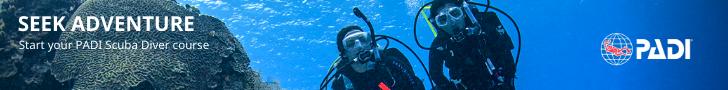 scuba diver banner