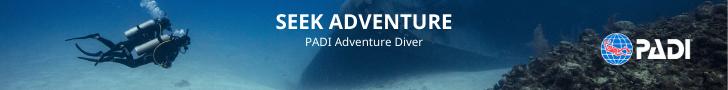 Adventures in Diving banner