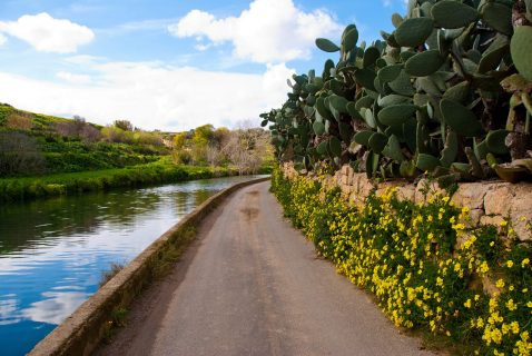 Chadwick Lakes Gozo