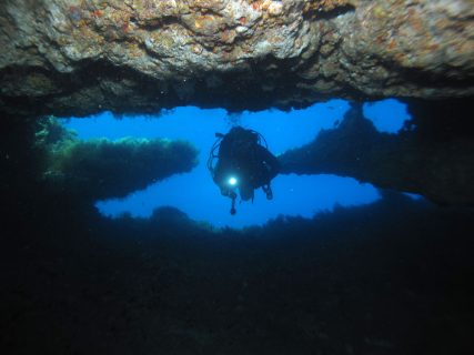 Gozo Dive into the underwater world of Gozo offers always something new to discover