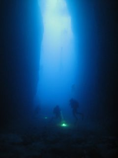 Inland Sea Diving