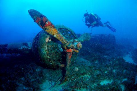 Blenheim Bomber Wreck Diver