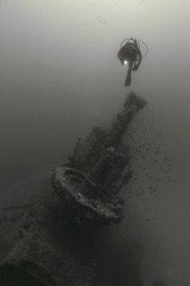Stubborn Gozo Diver
