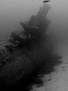 Stubborn Wreck Gozo