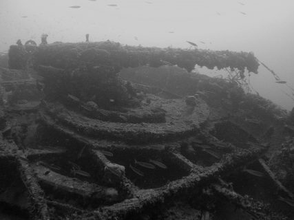 Le Polynesien Diving Malta